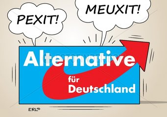 AfD Machtkampf Petry Meuthen