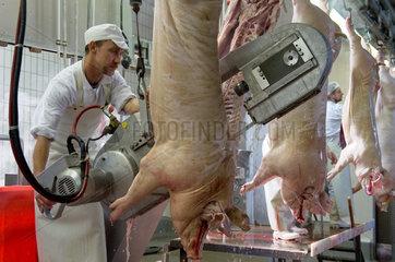 Neuruppin  Deutschland  Metzger bei der Verarbeitung geschlachteter Schweine