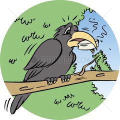 Raven perching on branch