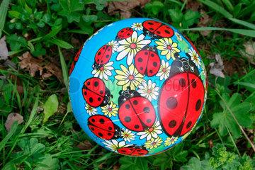 Buntes Ball auf eine Wiese