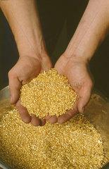 Gold als profitable Kapitalanlage
