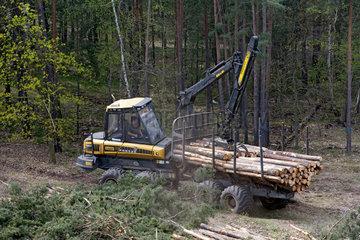 Forstwirtschaftsmaschine im Einsatz