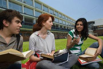 High school students having study group sitting on school lawn