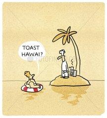 Toast-Hawai