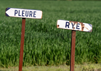 Road signs for two French towns  Pleure and Rye