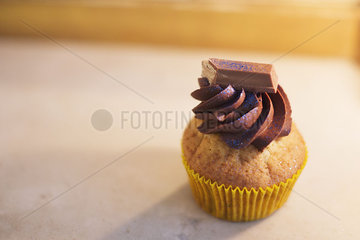 Cupcake with chocolate frosting