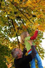 Vater hebt Sohn zu den Blaettern hoch  damit er sie abpfuecken kann (model released)