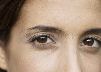 Woman with brown eyes  extreme close-up