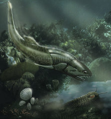 Coccosteus of the Devonian period hunting and scavenging armored fish.