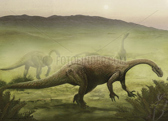 A herd of Plateosaurus grazing the Triassic land of Europe.