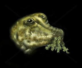 Nemegtosaurus portrait with plant in mouth.