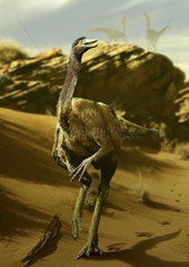 Gallimimus walking a barren landscape.