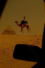 Security guard  Giza  Egypt