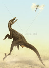 A small predatory Sinornithosaurus jumps at a dragonfly flying above.
