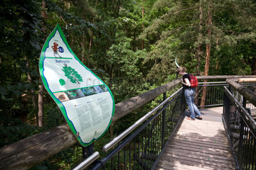 Fischbach  Deutschland  der Baumwipfelpfad im Biosphaerenreservat Pfaelzerwald