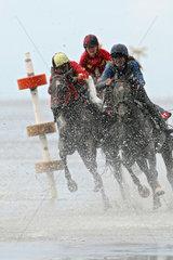 Cuxhaven  Deutschland  Pferde und Jockeys beim Duhner Wattrennen