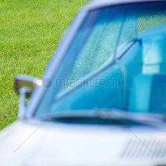 Oldtimer Cabrio auf Fruehlingswiese
