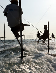 SRI LANKA-GALLE-STILT FISHING