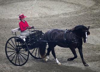 (SP)CANADA-TORONTO-ROYAL HORSE SHOW