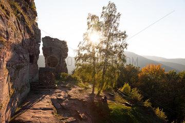 Lembach  Frankreich  Burg Fleckenstein