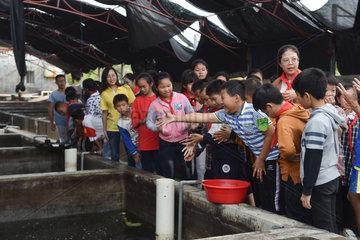 CHINA-FUJIAN-JINJIANG-FAMILY INN (CN)