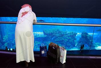 Dubai  Vereinigte Arabische Emirate  Araber vor dem Dubai Aquarium der Mall of Dubai