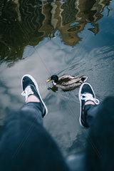 Ente schwimmt zwischen den Fuessen hindurch
