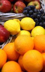Berlin  Deutschland  Citrusfruechte auf der Fruit Logistica