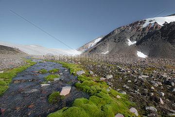 Schmelzwasserbach auf Groenland