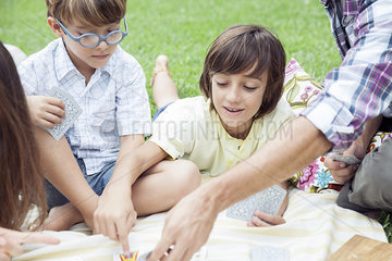 Boys playing cards at family picnic