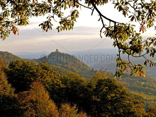 Siebengebirge Drachenfels