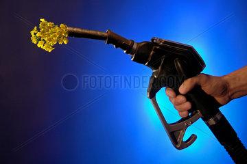Tankzapfpistole mit Rapsblueten
