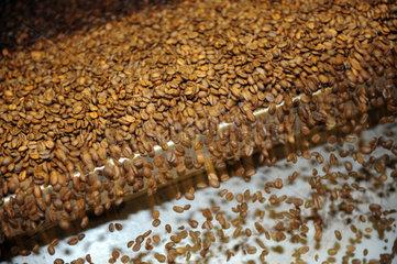 Berlin  Deutschland  geroestete Kaffeebohnen in einer Roestanlage im Kraft Foods Werk