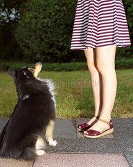Sitzender Hund mit Maedchen