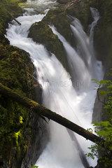 Waterfalls  Olympic National Park  Washington  USA