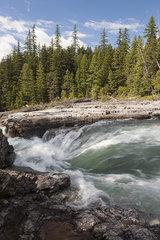 Stream rushing over rocks in Glacier National Park  Montana  USA