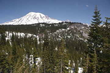 Mount Rainier  Mount Rainier National Park  Washington  USA