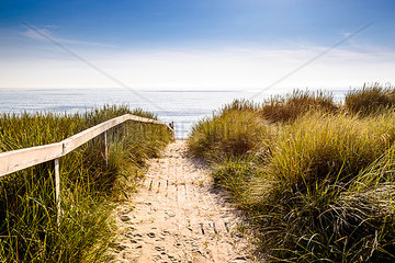 Germany  Schleswig-Holstein  Sylt  path through dunes