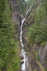 Mountain stream cascading through gorge  North Cascades National Park  Washington  USA