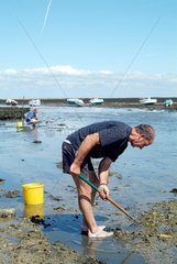 Bretagne - Austernsammler