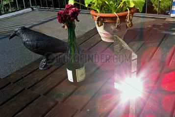 Dachgarten mit Kunststoffkraehe zur Taubenabwehr