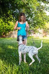 Girl teaching Dalmatian in the garden