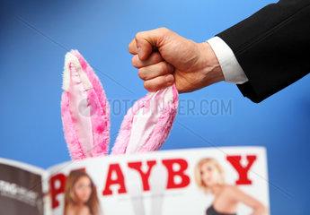 Playboy Haeschen wechseln Stall