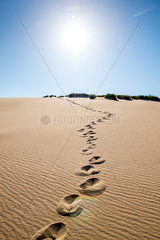 Germany  Schleswig-Holstein  Sylt  dune  sand with footmarks