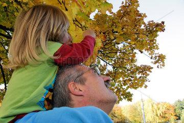 Vater traegt seinen Sohn auf den Schultern  damit er Blaetter abpfluecken kann (model released)