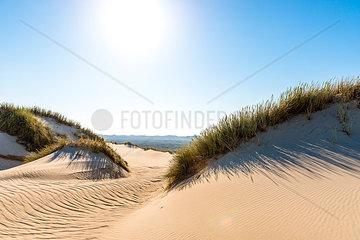 Germany  Schleswig-Holstein  Sylt  sand dune against the sun