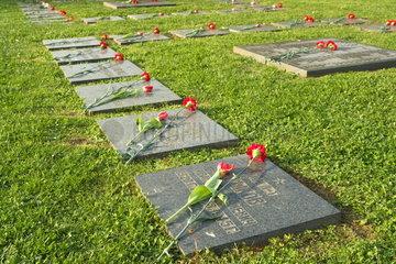 Blumenschmuck an Sowjetischem Ehrenmal