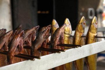 Frisch geraeucherte Aale