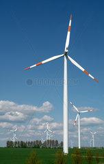 Windenergieraeder bei Magdeburg