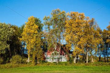 Herbst in Tromsssue